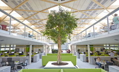 BCO Talk & Tour at the Living Planet Centre: WWF-UK Headquarters