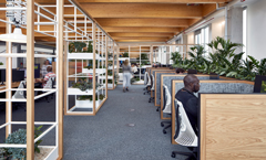 BCO NextGen South West: Biophilic Design Talk