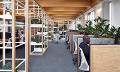 BCO NextGen South West - Biophilic Design Talk