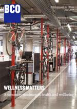 Wellness roadmap cropped